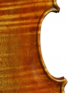 violin after Lord Wilton Guarneri Sept 2013 back middle section