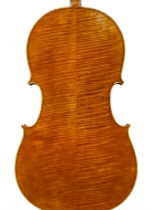 cello-inspired-by-montagnana-back