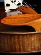 hudelmayer-chinrest boxwood