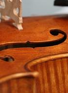viola 16 3/4′ 42.7cm in Brescian style front-detail
