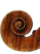 viola 16 1/8′ 40.9cm after Brothers Amat scroll side