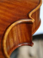 viola 16\'  40.4cm in Brescian style back detail