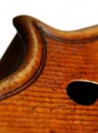violin after Lord Wilton Guarneri Sept 2013 corner detail