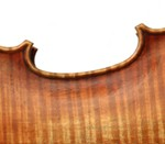 detail of violin 2011 after A Stradivari