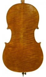 cello inspired by Montagnana